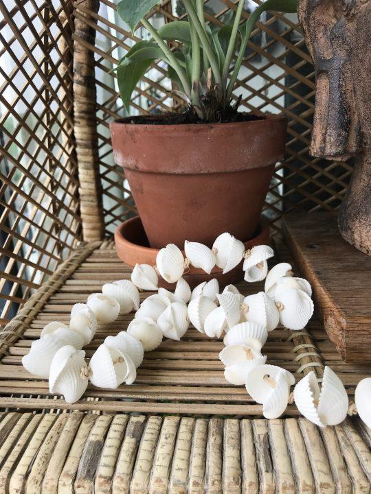witte slinger van schelpen